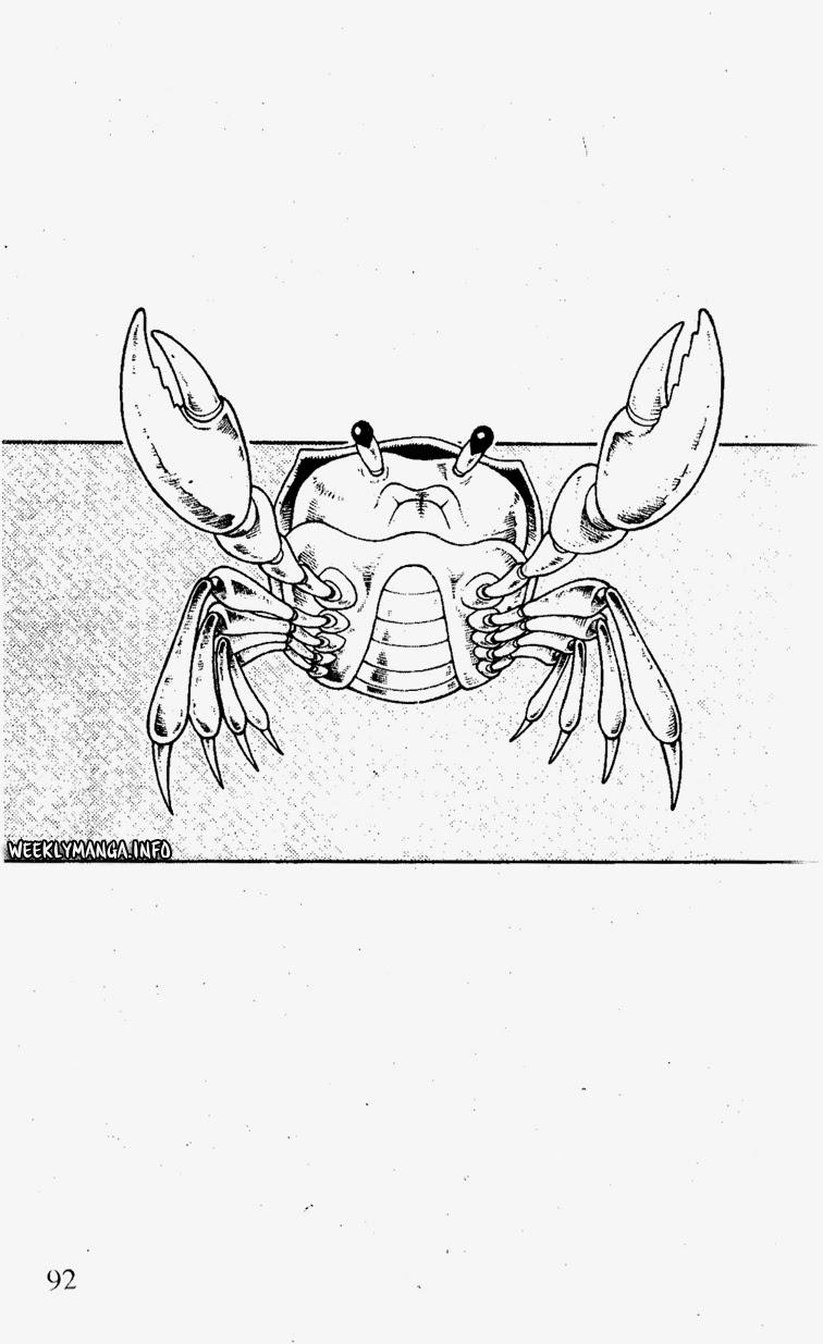 Shaman King [Vua pháp thuật] chap 182 trang 19