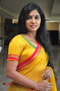 Usha Jadhav Stills in Saree at Veerappan Movie Pressmeet  0035