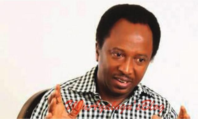 Tinubu, Saraki's humiliation will make Buhari's re-election difficult – Shehu Sani