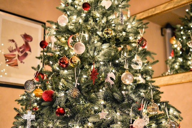 HD Xmas Tree Pictures Images Free