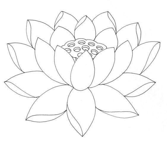 Tranh tô màu hoa sen 8