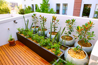 Apartment Balcony Garden Designs