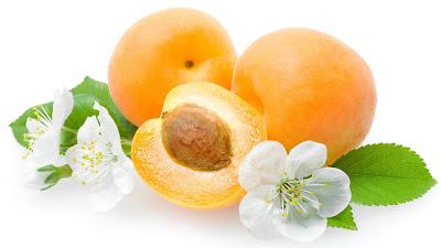 foto buah aprikot