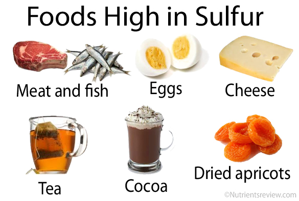 Fungsi Sulfur Bagi Tubuh Manusia