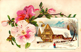 antique illustration flower winter country digital image