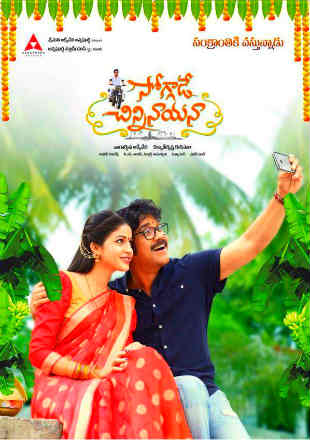 Soggade Chinni Nayana 2016 Hindi Dubbed Movie Download HDRip 480p 500Mb