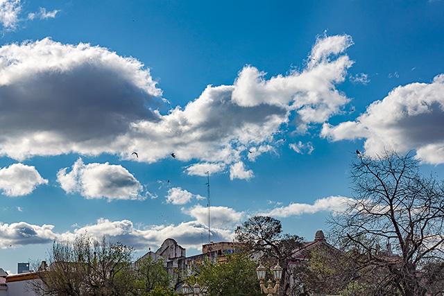 Palomas volando con un cielo cargado de nubes