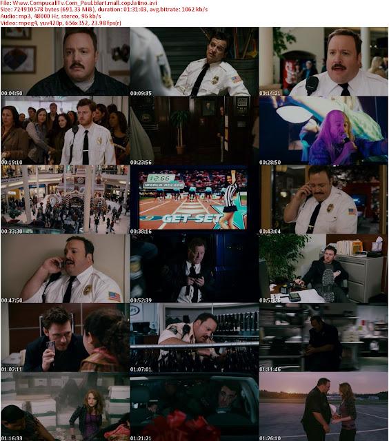 Heroe de Centro Comercial DVDRip Latino Descarga 1 Link