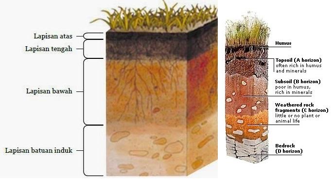 pembahasan lapisan tanah | amuzigi.com