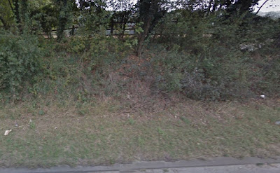 Google Street View - southeast side of Hatfield Road where MI5 groups accessed Richter's second equipment stash.
