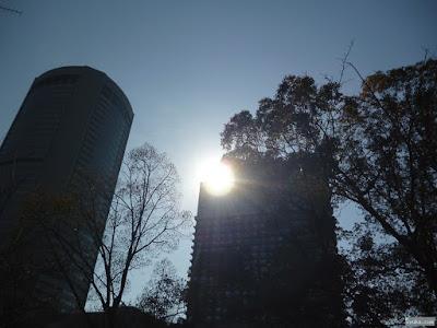 太陽とビル