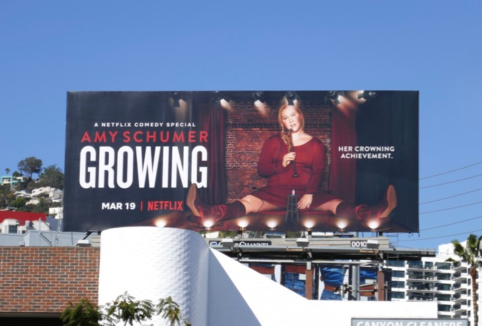 Amy Schumer Growing Netflix billboard