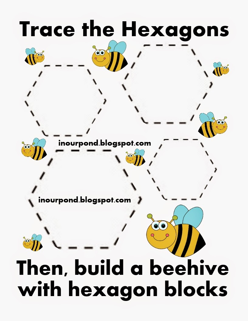 Bee Hive Worksheet and Activity (free) - In Our Pond