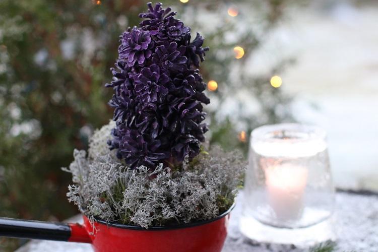 diy, käpyhyasintti, hyasintti, joulukukka, ruusumäki, kotiliesi, joulukalenteri