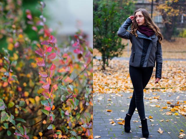 Rosewholesale jesienią!