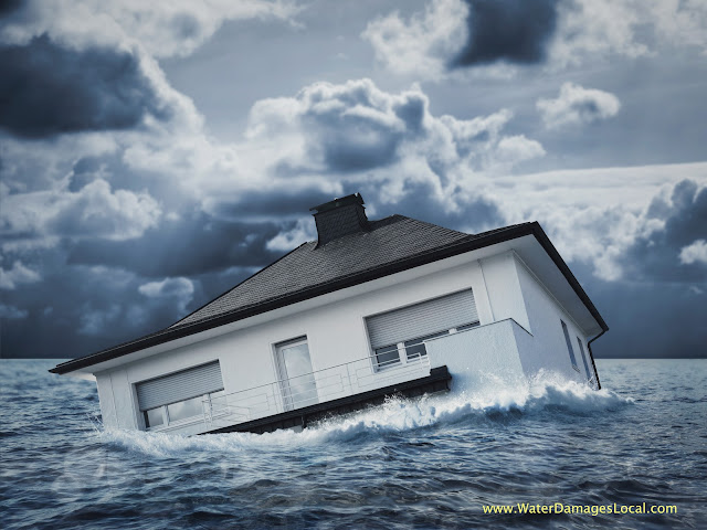 Best Water Damage Restoration Companies