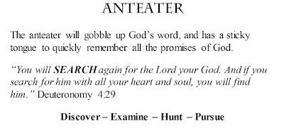 Deuteronomy 4:29 Anteater