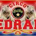 A Treviso torna lo spettacolo del Circo Medrano: venerdì la serata di gala