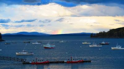 阿卡迪亞國家公園Acadia National Park遊記: Schoodic Peninsula