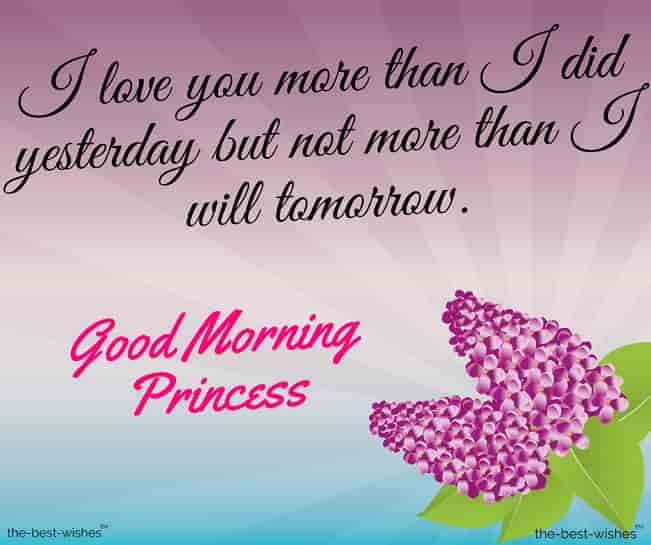 good morning message for princess