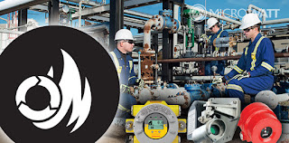 Fixed and Portable Gas Detection System