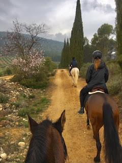 Andalusia, Horsexplore, riitta reissaa,
