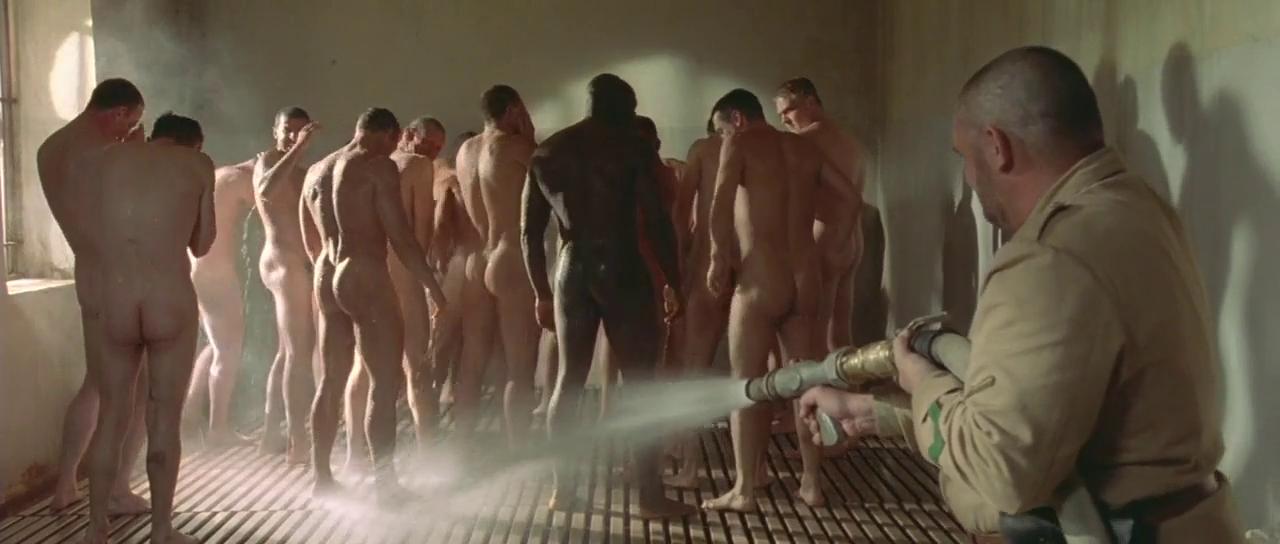 Вандам кино порно — pic 1