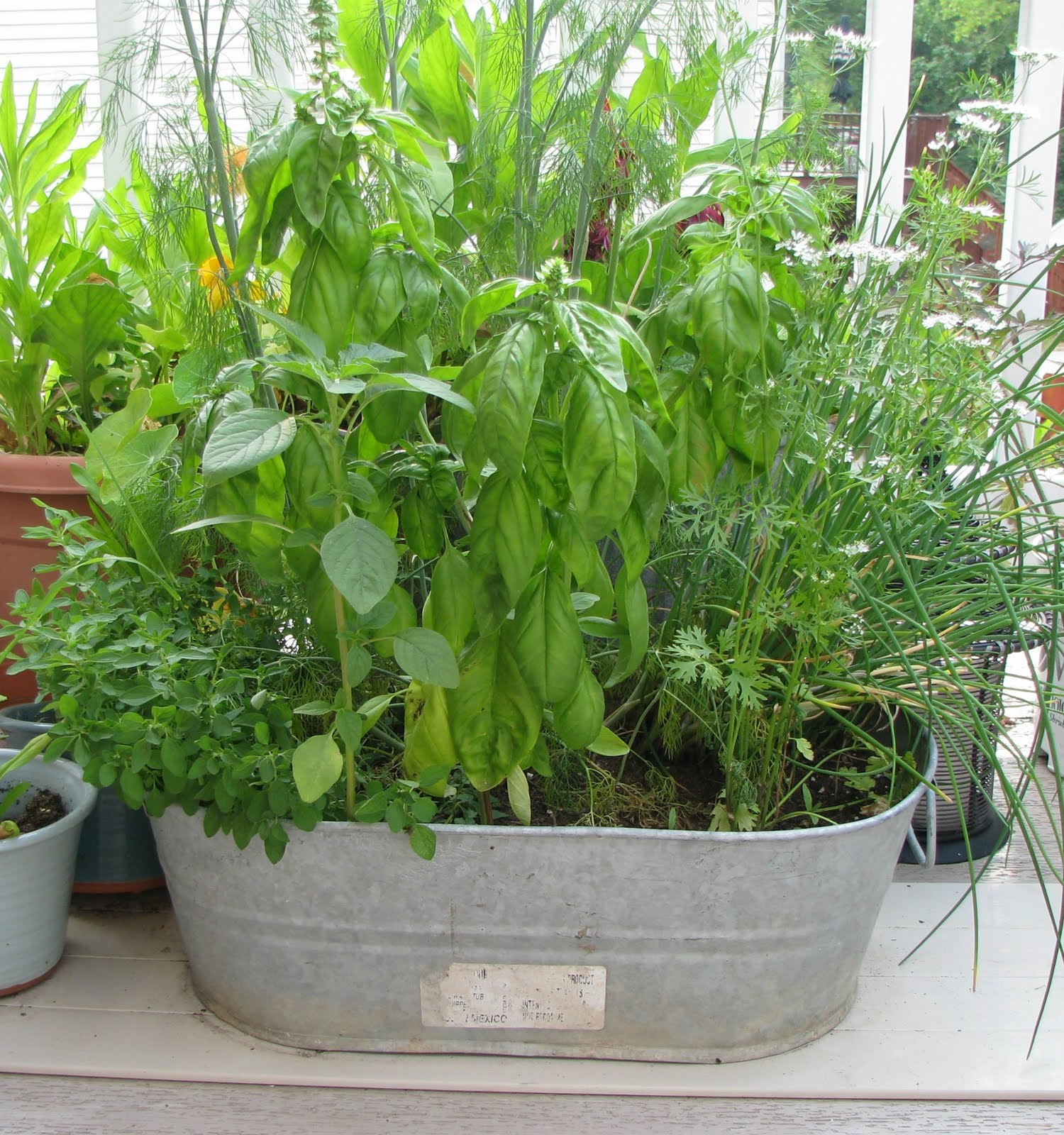 Herb Planter Pot Musings From Kim K A Garden Tour And Corn Avocado Salad