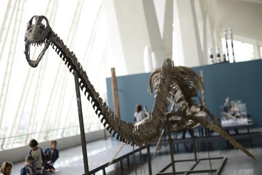 'Els nostres dinosaures' finaliza su periodo de exposición el 6 de enero