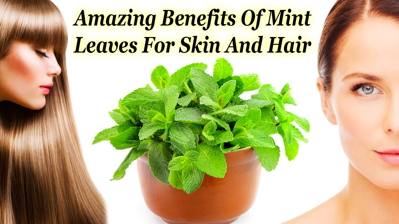 Mint for Skin
