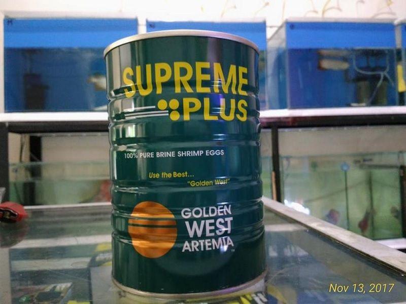 Gambar Harga Artemia Supreme Plus