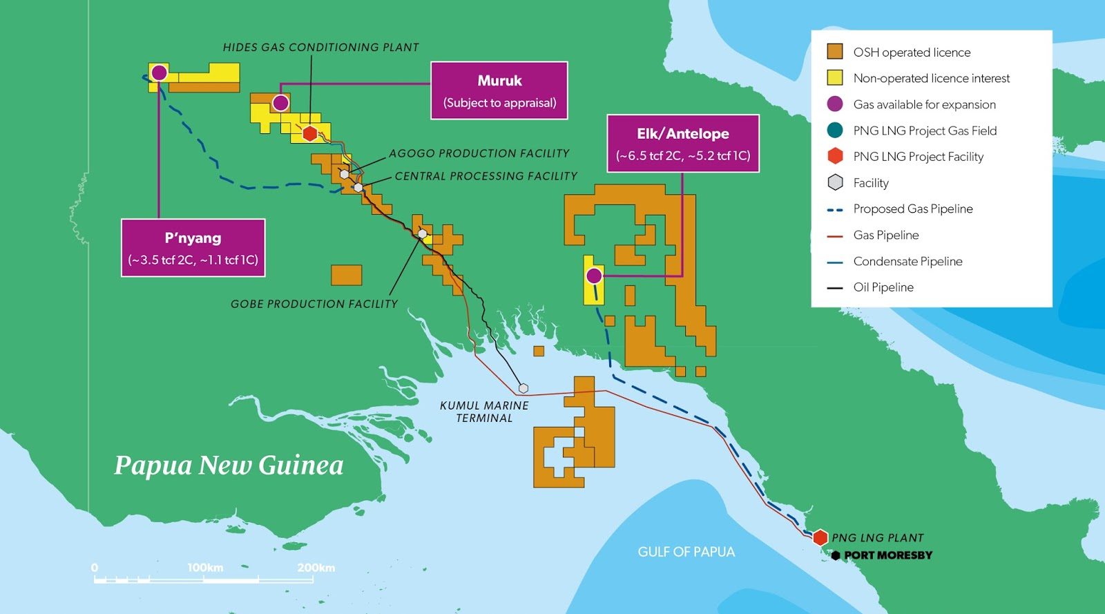 co mingled gas marketing the new lng could come onstream by the early 2020s and would arrive in time for an emerging lng supply gap that is foreseen by