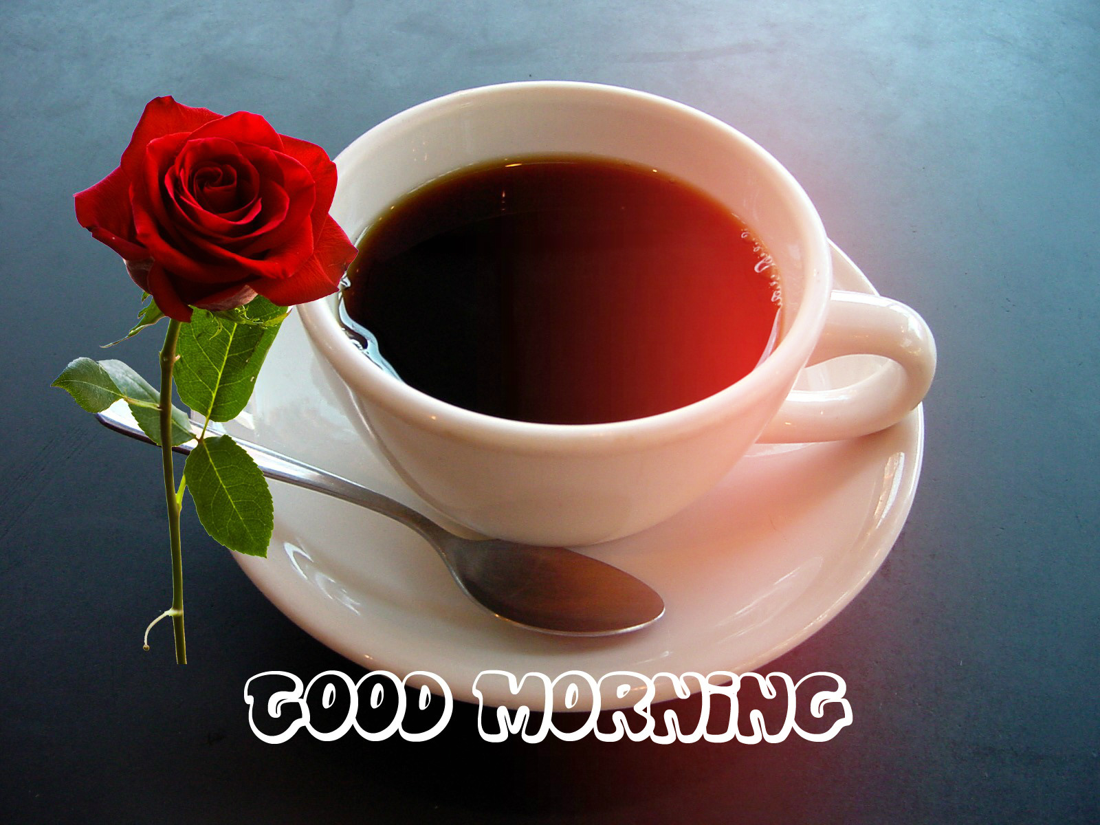 Sweet Girl And Boy Hd Wallpaper Lovely Red Roses Good Morning Wishes Images Festival Chaska