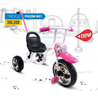 wimcycle frozen tricycle