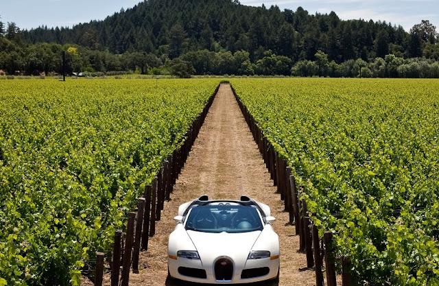 Aluguel de carro em Napa Valley: Dicas para economizar