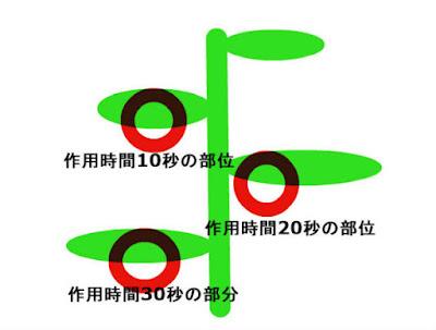 3つの濃度×3つの作用時間=9か所
