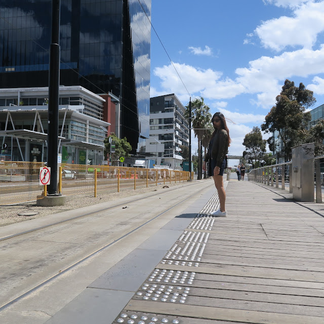 yarra tram tracks, free tram zone, melbourne, australia