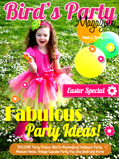 Blog Time Out and Exciting Party Projects | Bird's Party Magazine