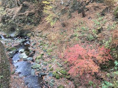 榛名神社 参道に並行する沢