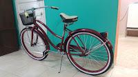 bicicleta-modelo-niagara