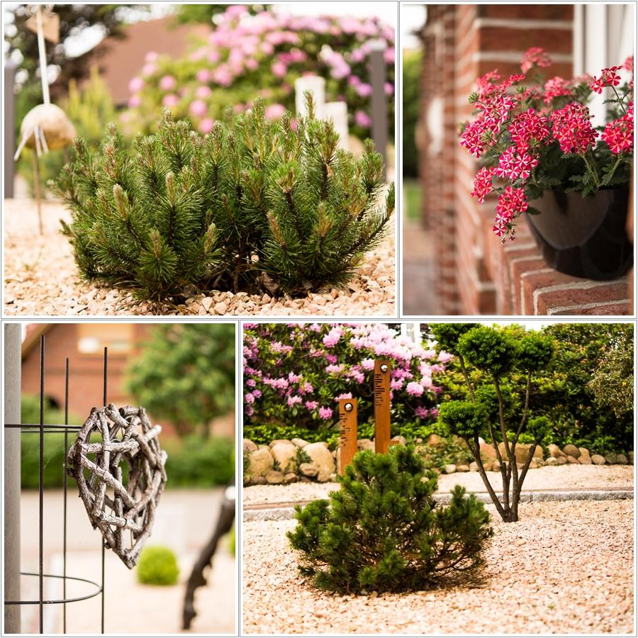Blog + Fotografie by it's me | fim.works | Ein Garten im Norden | Collage vom Vorgarten | Kugel-Kiefer, Holzherz, Deko mit Rostpatina
