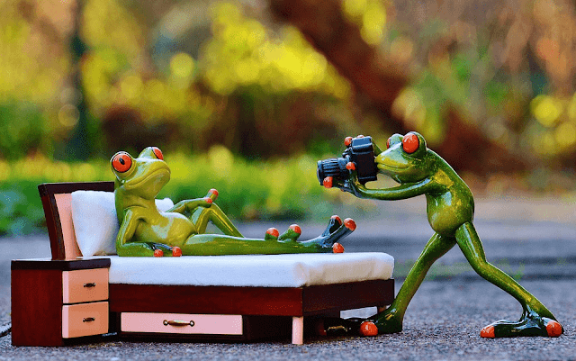 Capa - Fonte: Pixabay