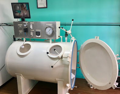 India. Veterinary Hyperbaric Oxygen Therapy Chamber (VHBOT)