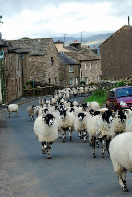 Just another ordinary day in Yorkshire