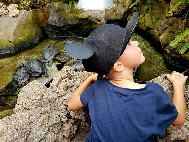 majówka 2019 - tania majówka z dzieckiem - długi weekend majowy - rodzinna majówka - podróże z dzieckiem - majówka w domu