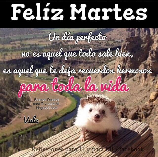 FELÍZ MARTES Un día perfecto no es aquel que todo sale bien, es aquel que te deja recuerdos hermosos para toda la vida