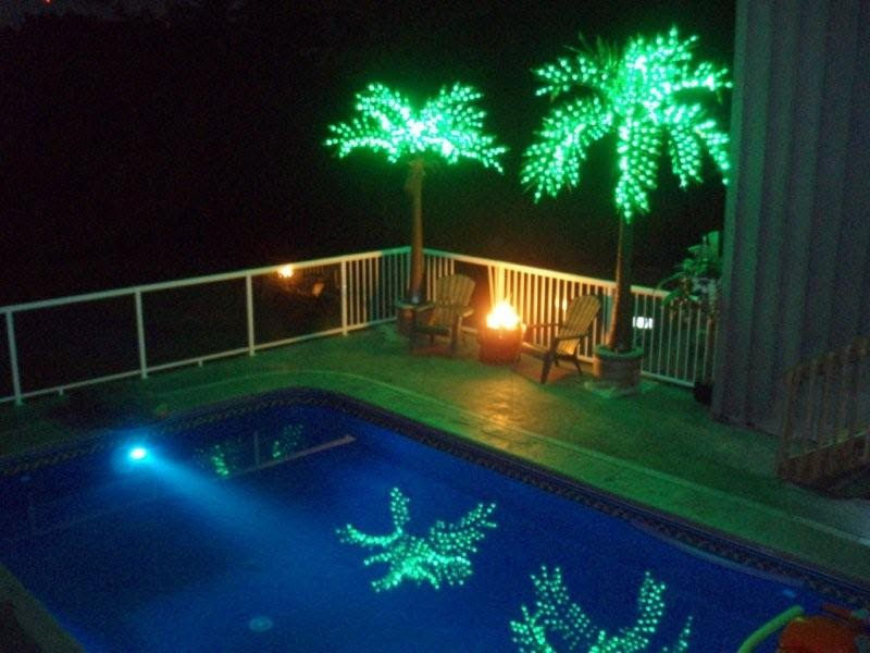 The Most Realistic Led Lighted Palm Tree Welcome To Myoutdoorconnection