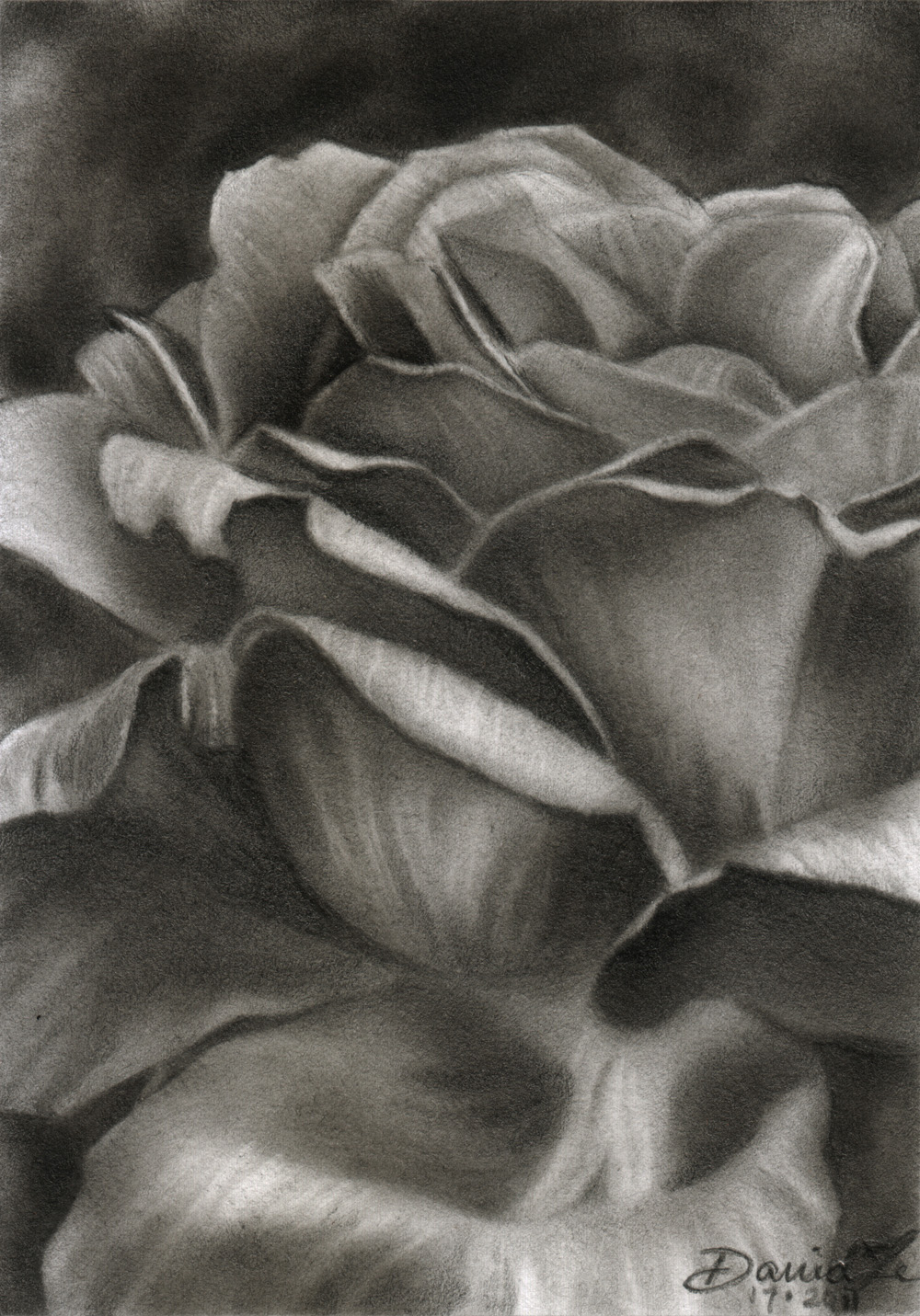 Pencil Drawings by David Te: October 2011