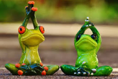 Gambar Katak Lucu Sedang Yoga