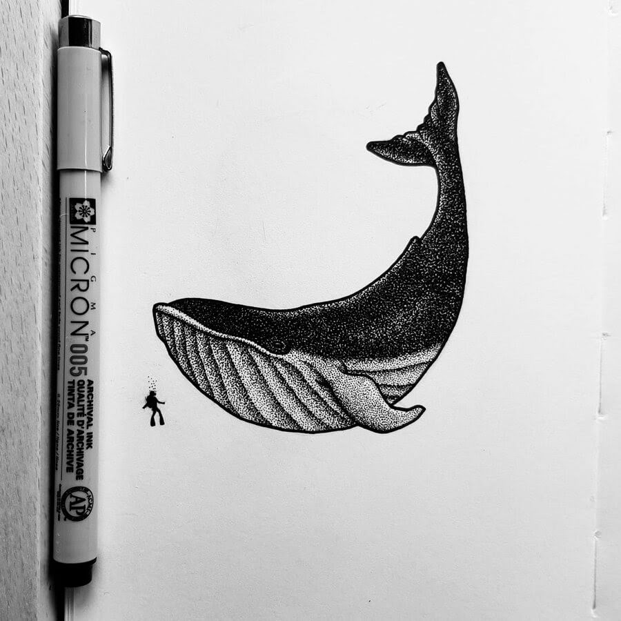 02-Whale-and-scuba-diver-bloopdots-www-designstack-co